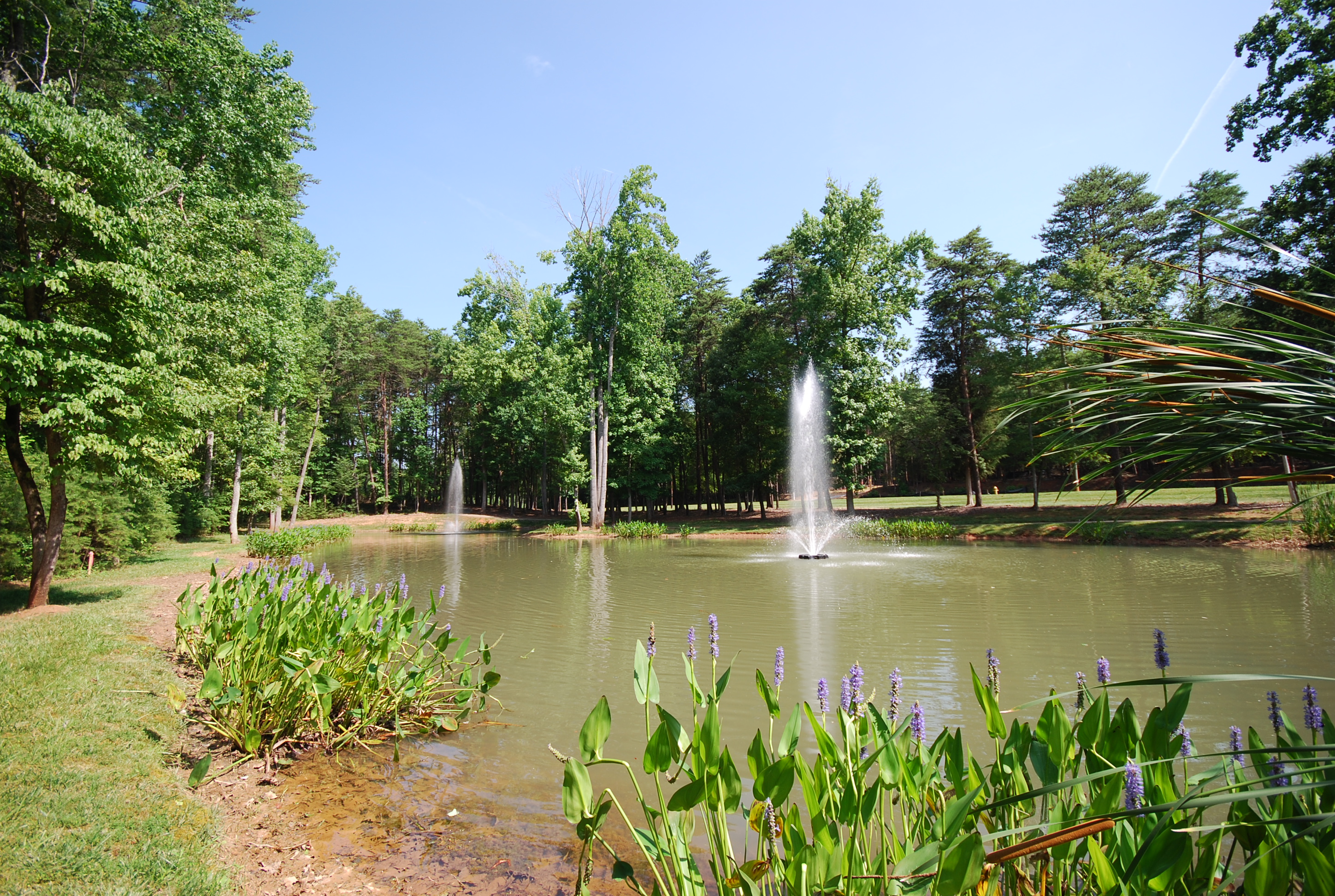 Gorgeous .73 Acre Flat Lot in Reflection Pointe w/ Lake Wylie Access